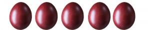 marans-eggs31